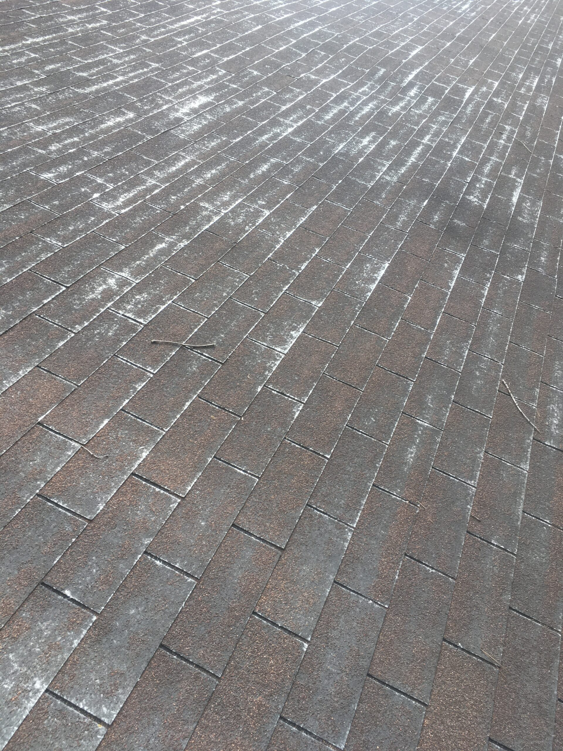 """When all of the granules are gone the only thing that left is the fiberglass mat. This is known as a """"Velvet Roof""""."""