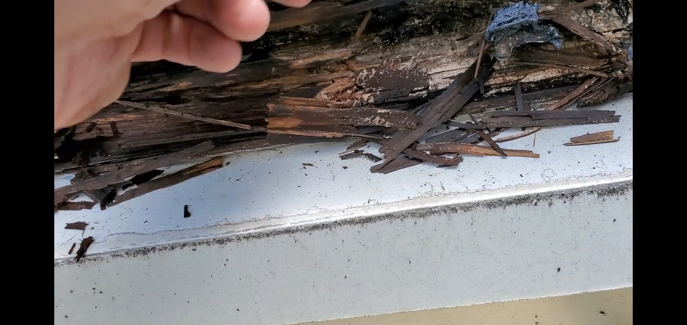 Roof Decking Completely Rotted