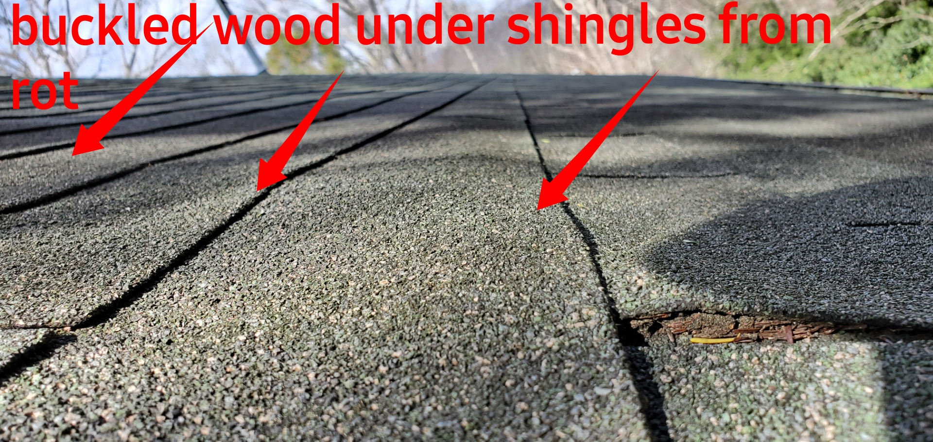 Buckled Wood under shingles