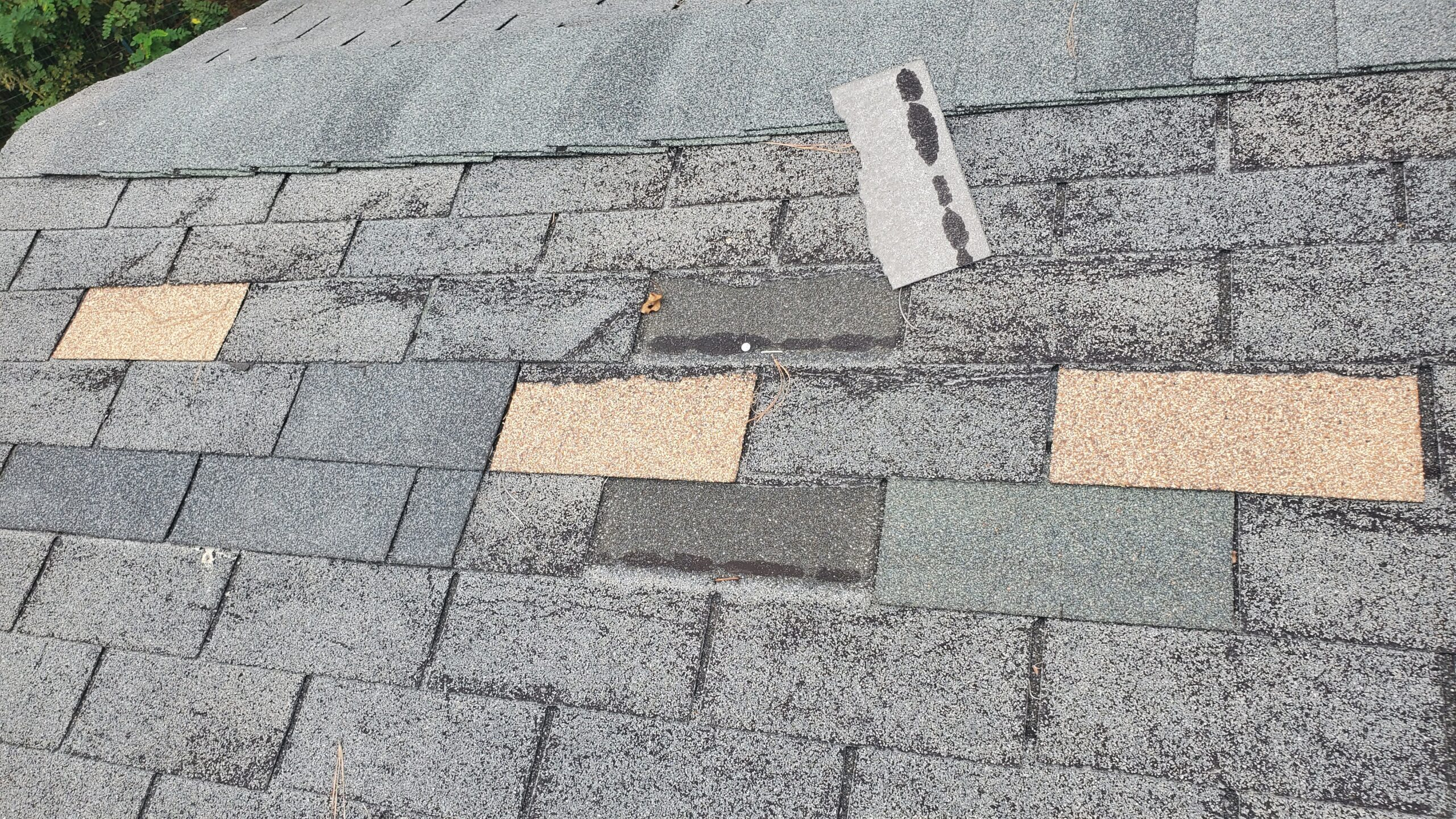 This is a close up picture of a shingle roof that ha