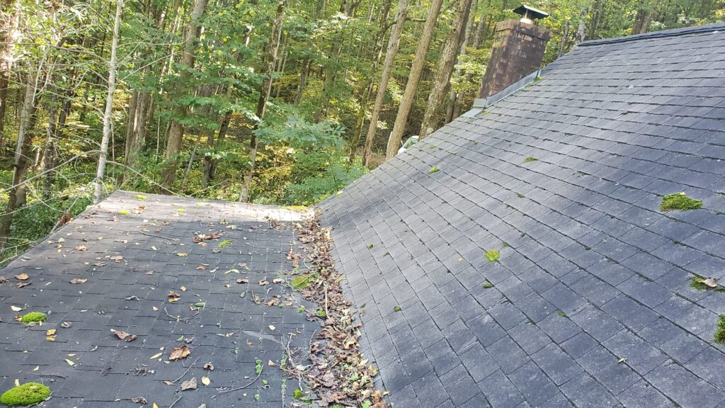This is a picture of a shingle roof that is covered in algae and moss