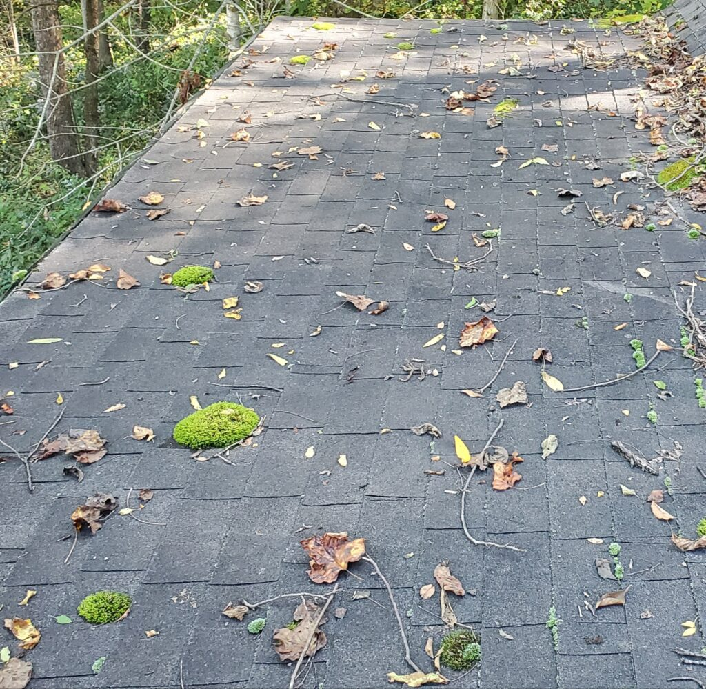 This is a picture of a grey shingle roof above a porch and it doesn't have enough of a slope
