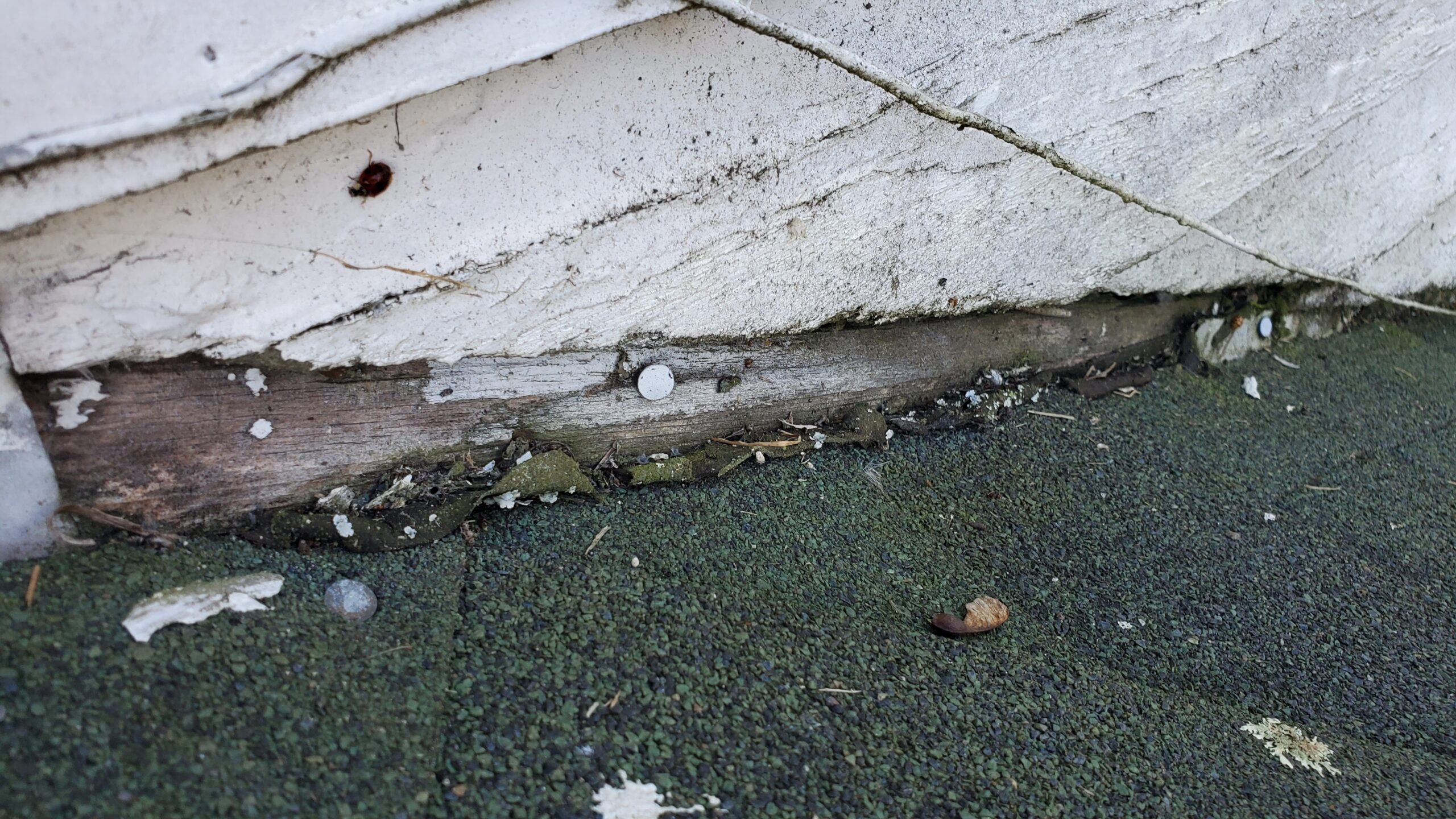 This is a picture of shingles butted up against a wall with siding on it.
