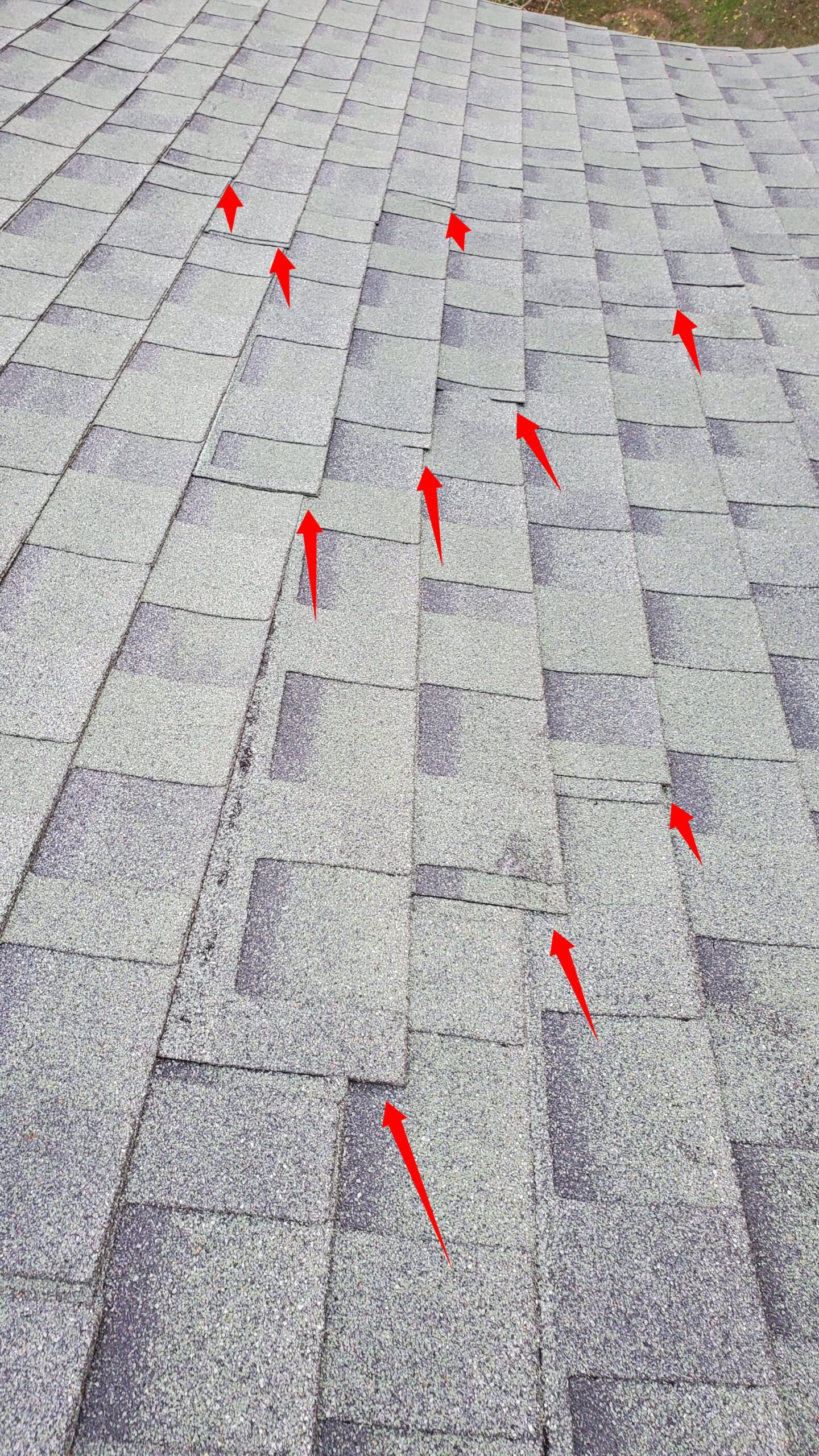 This is a picture of s green shingle roof with red arrows all over it, pointing to shingles that are sliding down the roof