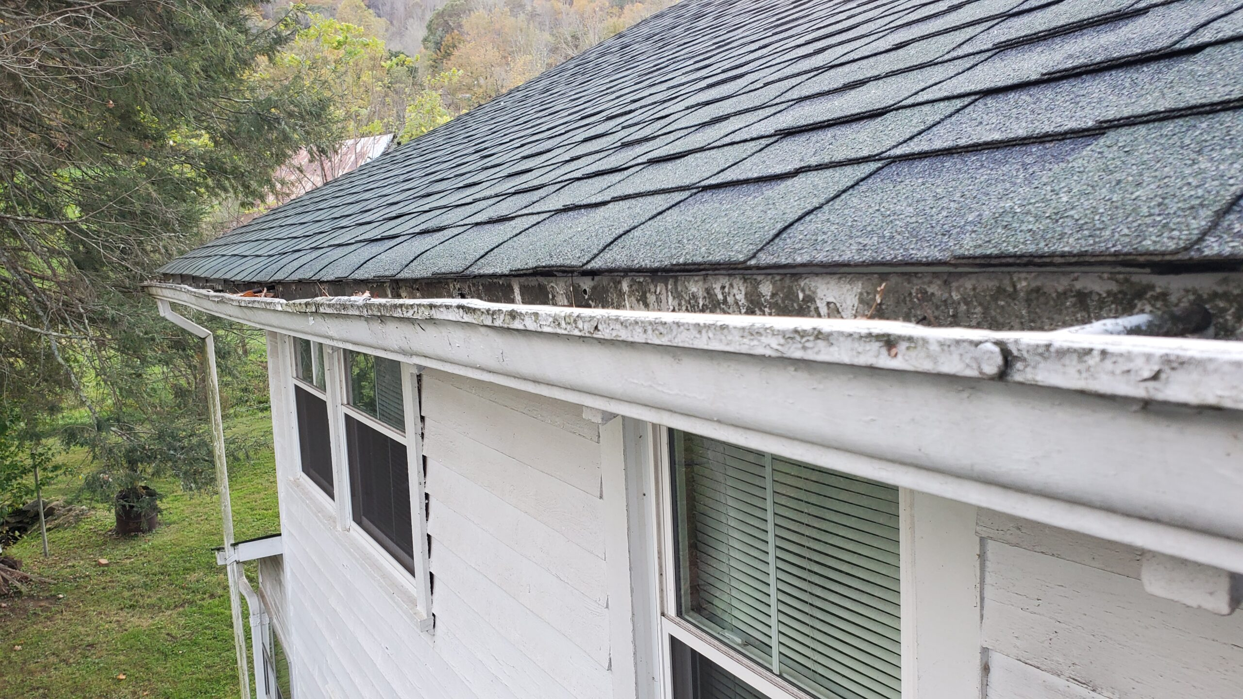 Roof in desperate need of gutters