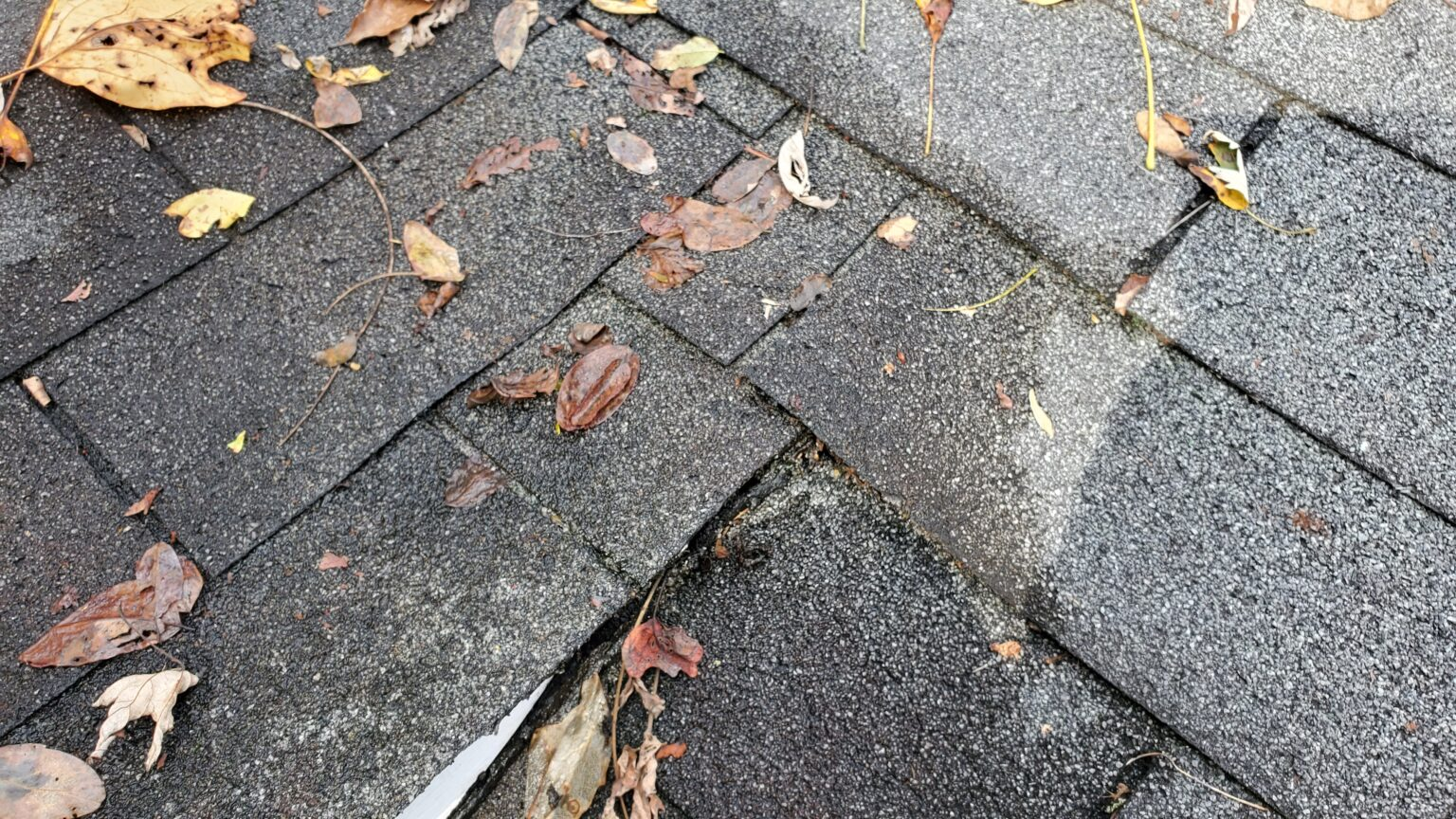 This is a picture of gray shingles with leaves on the roof.