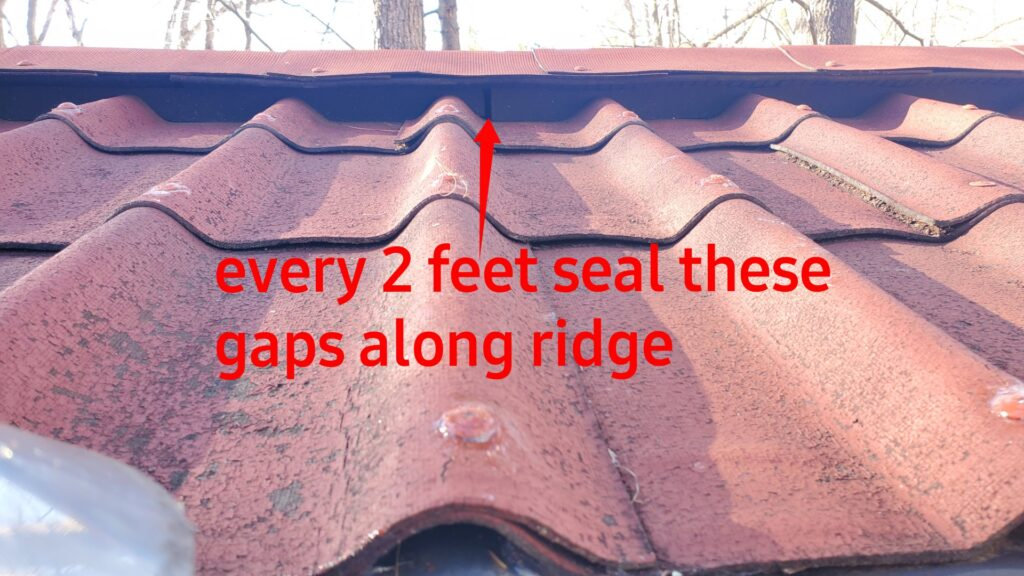 This is a picture of the ridge